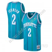 Basketball Trikot Kinder Charlotte Hornets 1992-93 Larry Johnson 2# Blaugrün Hardwood Classics Swing..
