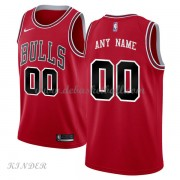 Basketball Trikot Kinder Chicago Bulls 2018 Road Swingman