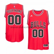 Chicago Bulls Basketball Trikots 2015-16 Road Trikot Swingman