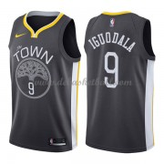Golden State Warriors Basketball Trikots 2018 Andre Iguodala 9# Alternate Trikot Swingman..