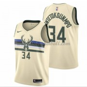 Milwaukee Bucks Basketball Trikots 2018 Giannis Antetokounmpo 34# City Swingman..