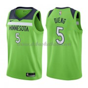 Minnesota Timberwolves Basketball Trikots 2018 Karl Gorgui Dieng 5# Alternate Trikot Swingman..